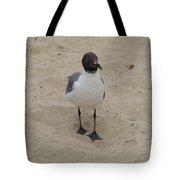 Struttin' Seagull  Tote Bag