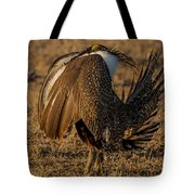 Strutting And Puffing Tote Bag
