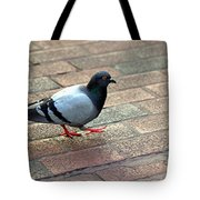 Strutting Pigeon Tote Bag