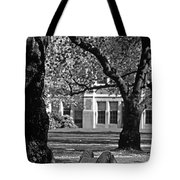 Student Reading Under Tree Tote Bag