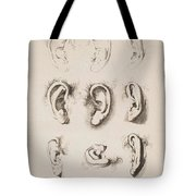 Studies Ears Anonimo, Blooteling Abraham Tote Bag