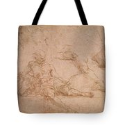 Study For The Figure Of Diogenes In The School Of Athens Tote Bag