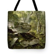 Study From Nature   Rocks And Trees Tote Bag