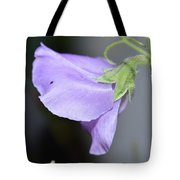 Study In Purple 2 Tote Bag