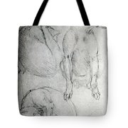 Study Of A Dog And A Cat Tote Bag