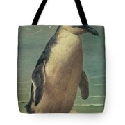 Study Of A Penguin Tote Bag