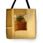Study Of My Neighbors Porch Tote Bag