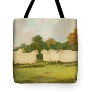 Study Of Sheep In A Landscape   Tote Bag by Richard Whitford