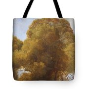 Study Of Trees 1849 Tote Bag