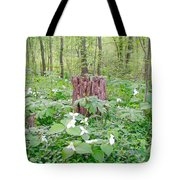 Stump By The Trilliums Tote Bag