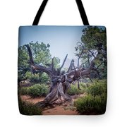 Stump In The Fog Tote Bag