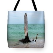 Stump Pass Tree In Color Tote Bag