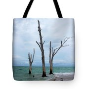 Stump Pass Triplets Tote Bag
