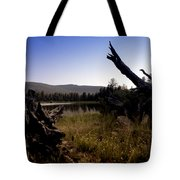 Stumped By The Lake Tote Bag