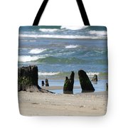 Stumpy Beach Tote Bag