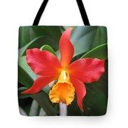 Stunning Cattleya Tote Bag