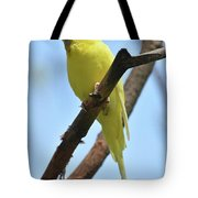 Stunning Little Yellow Budgie Parakeet In Nature Tote Bag