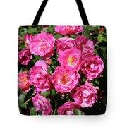 Stunning Pink Roses Tote Bag