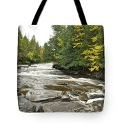 Sturgeon River Tote Bag