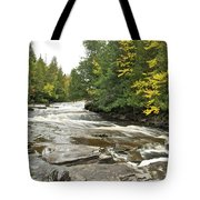 Sturgeon River Tote Bag