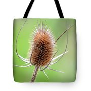 Style Tote Bag