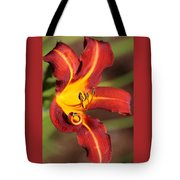 Stylistic Daylily Tote Bag