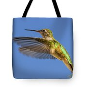 Stylized Hummingbird In Hover Tote Bag
