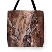 Subdued Colors Of Buckskin Tote Bag