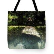 Submerged Tote Bag