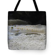 Substrate-sifting Diamond Watchman Goby Pair Tote Bag