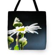 Subtle Beauty Tote Bag