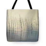 Subtle Serenity Tote Bag