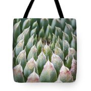 Succulant Spikes Tote Bag