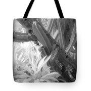 Succulent Delight Tote Bag