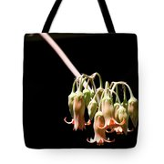 Succulent Flower Tote Bag