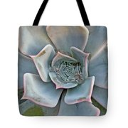 Succulent In Pastels Tote Bag