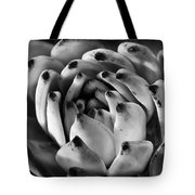 Succulent Petals Black And White Tote Bag by Kelley King