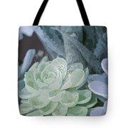 Succulents 2 Tote Bag