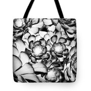 Succulents Monochrome Tote Bag