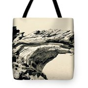 Suddenly A Lone Beach Camel Appeared Tote Bag