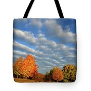 Sugar Maple Sunrise Along Route 31 Tote Bag