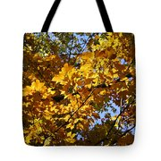 Sugar Maple Tote Bag