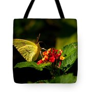 Sulpher Butterfly On Lantana Tote Bag
