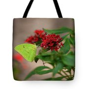 Sulphur Butterfly On Red Flower Tote Bag