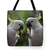 Sulphur Crested Cockatoo Pair Tote Bag