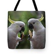Sulphur Crested Cockatoo Pair Tote Bag