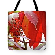 Sumac Closeup On White Pine Trail In Kent County, Michigan Tote Bag