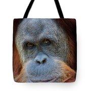 Sumatra Orangutan Portrait Tote Bag