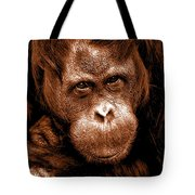 Sumatran Orangutan Female Tote Bag