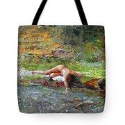 Summer Along Rio Chiquito  Tote Bag